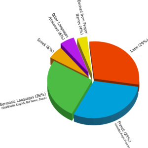 A pie chart that shows many of English's vocabulary roots: German, French, Latin, and more
