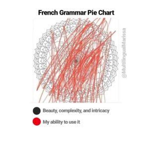"""A meme labeled """"French grammar pie chart"""" which is actually a beautiful intricate mandala with a bunch of scribbles on it"""