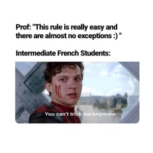 """French Grammar meme with spiderman saying """"you can't trick me anymore"""""""
