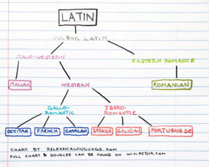 A family tree of Latin Languages, including Italian, French, Romanian, Portuguese, Spanish, French, and Catalan