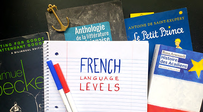 """The words """"French Langauge Levels"""" written on paper"""