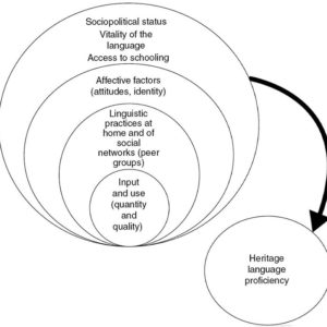 """A chart showing the levels of use and understanding a heritage language speaker would need to arrive at to be judged as a """"proficient"""" langauge user"""