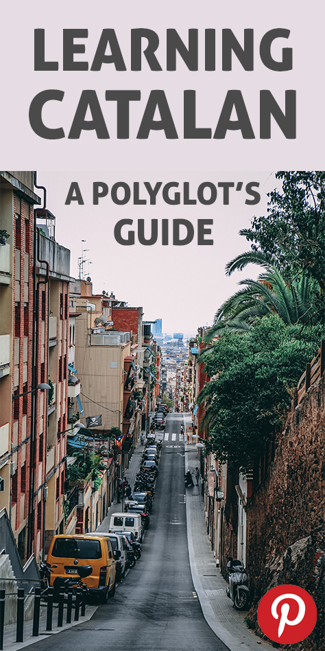 The Pinterest flag for Learning Catalan: a polyglot's guide